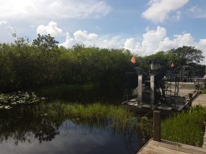 Everglades Miami Beach